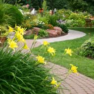 Настоящий рай в вашем саду!