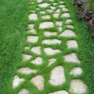 Зеленая дорожка
