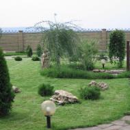 Озеленение приусадебного участка