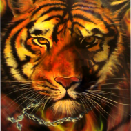 Аэрография: Тигр на капоте - это всегда стильно!
