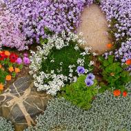 Цветочный рай на вашем участке