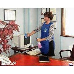 клининг услуга по уборке квартир нижний новгород