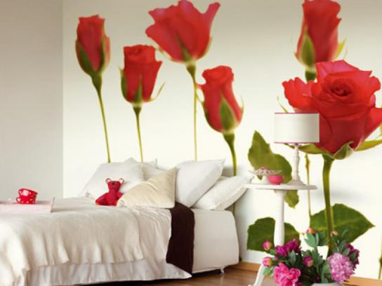 Фотообои: Розы
