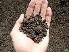 Грунт (почва) - основа для строительства дома